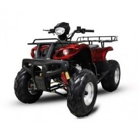 Quad HUMMER 250 cc