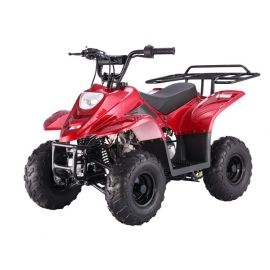 "Bigfoot 110cc 6"" Quad Enfant"