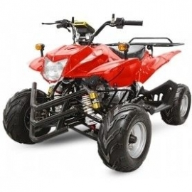 Quad Crusher 50cc