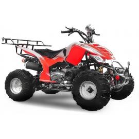 Quad 150cc Raptor