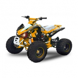 Quad Speedbird RS8 125cc