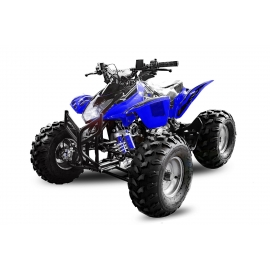 Quad Grizzly 3G8 125cc