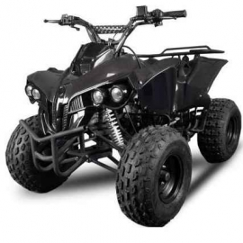 Quad Warriror XXL 125cc