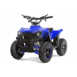 Mini Quad Trucky 49cc