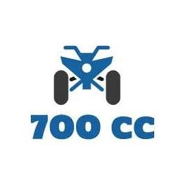 Quad 700cc et +